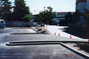 Hi Border curb used in carpark installation.